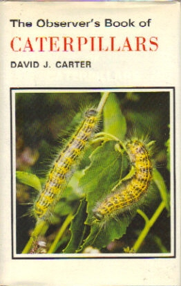 Observer's Book of Caterpillars